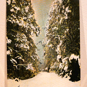 TOMMY'S BEND IN THE SNOW MARYSVILLE 1911. - Postcards
