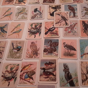 Birds of Australia cards from Tuckfields tea - Advertising