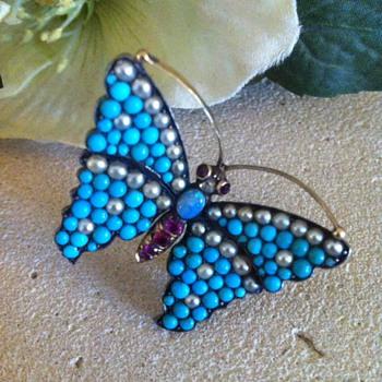 Butterfly early victorian brooch.