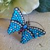 Butterfly early victorian brooch.