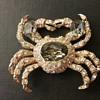 Ciner crab brooch