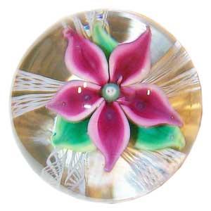 Strathearn D4 Magnum Madder Flower