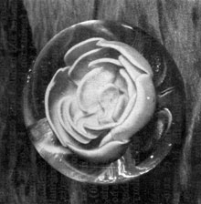 A Fine Rose by Ralph Barber: Splendid example of Ralph Barber's work - rose without foot