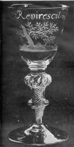 Illustration III: The Revirescit Goblet: Beneath the wording the decoration is that of a stricken oak with a young sapling springing up nearby. On the reverse are engraved an eight-petalled Stuart rose and two buds. The stem has in air twist with double knobs. This goblet relents the efforts of the Stuarts to regain the English throne. Made about 1750, it is commemorative of the defeat of the Young Pretender at the Battle of Culloden.