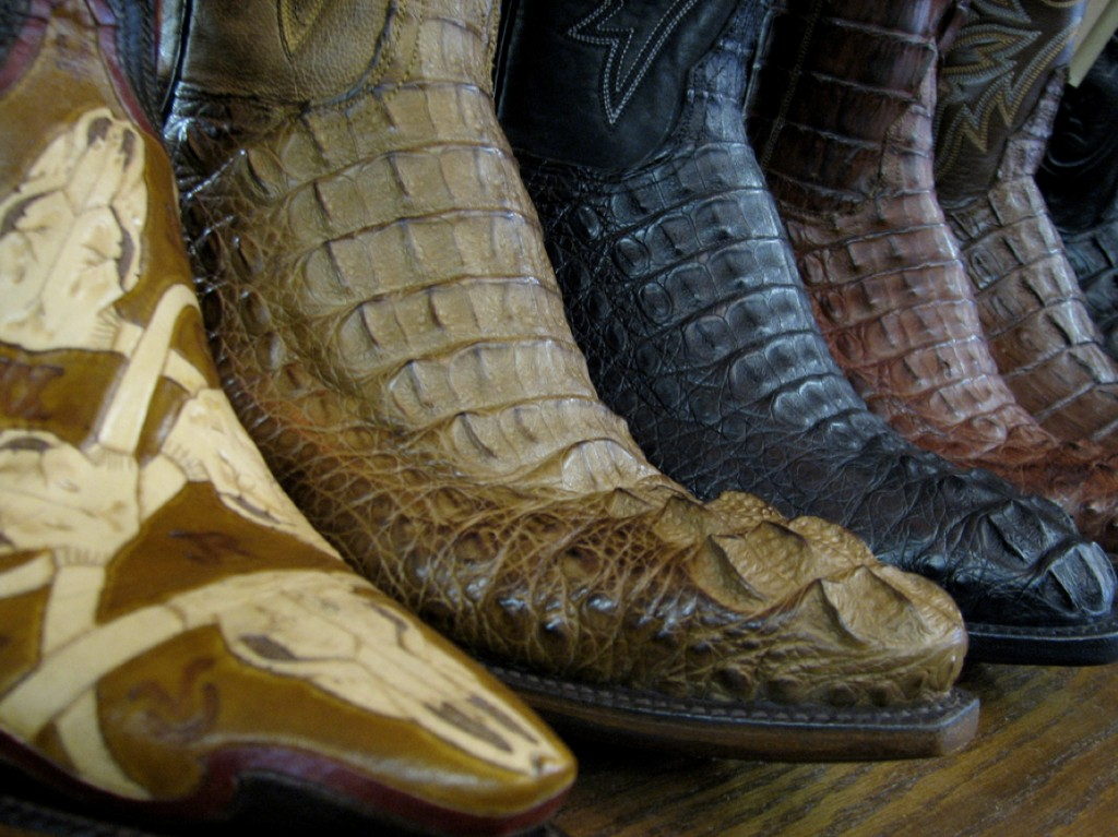 Lucchese is one of many makers who uses exotic skins such as alligator in its boots. These were on display at Allens Boots in Austin.