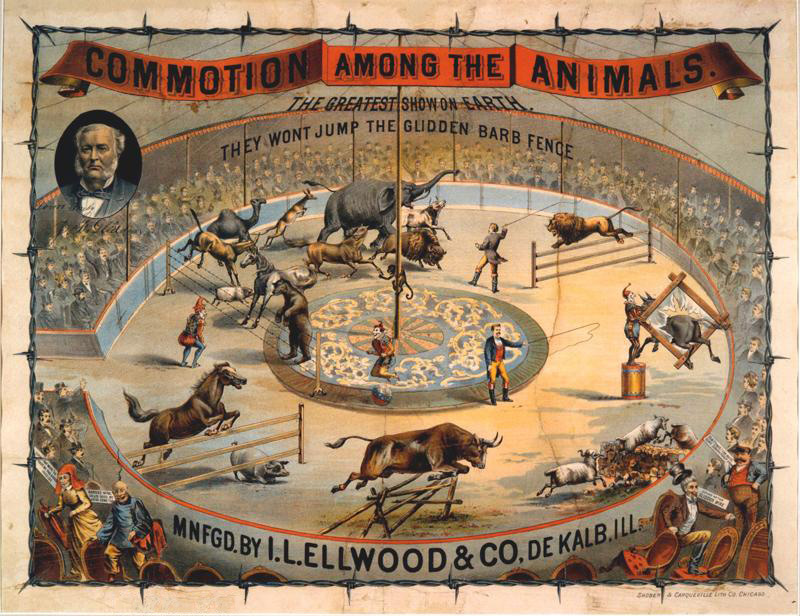 The effectiveness of barbed wire on animals, dramatized and set in a circus ring. Photo from the Ellwood House Museum.