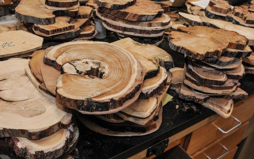 Trunk slices in the archives of the Laboratory of Tree-Ring Research at the University of Arizona. Photo by PK Weis / southwestphotojournal.com.