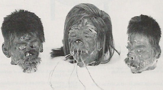 The Peruvian shrunken head on the left dates from 1925-1950, and was probably made-to-order. The other two in the World Museum are said to be Jivaro tribe trophies, circa 1900-1925. (From the Christie's catalog, courtesy of LaDonna Osborn)
