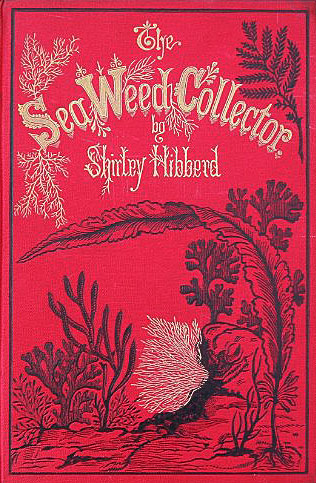 """The Seaweed Collector"" by Shirley Hibberd, 1872."