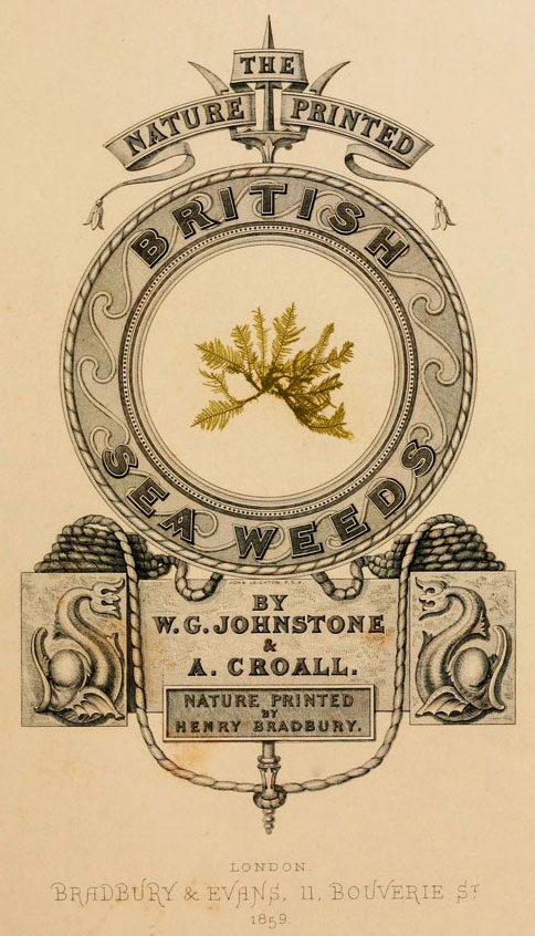 "The title page of W.C. Johnstone and A. Croall's ""British Seaweeds"" from 1859, which was illustrated with Henry Bradbury's nature-prints."