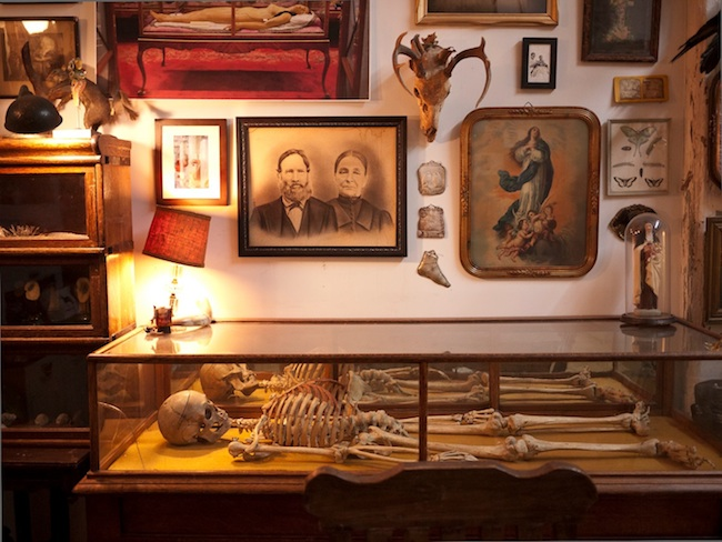 Top: A Santa Muerte figure at Botánica de la Santa Muerte in Los Angleles. (Photo by Joanna Ebenstein) Above: The current Morbid Anatomy Library and Curiosity Museum open weekly inside the Proteus Gowanus gallery in Brooklyn. (Via the Morbid Anatomy Museum Facebook page)