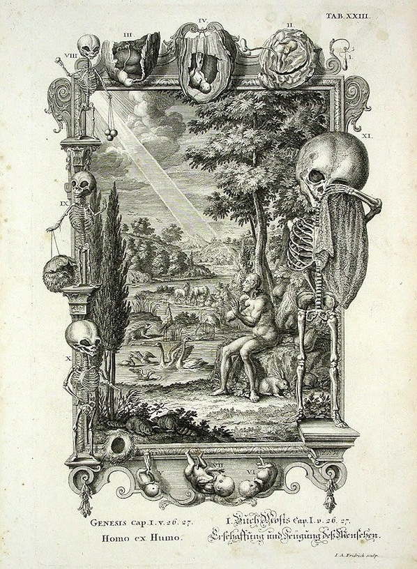 """An image titled """"Homo ex Humo,"""" or """"Man From the Ground,"""" from Johannes Jacob Scheuchzer's 1735 book set """"Physica Sacra."""" Ebenstein says it """"blends Bible commentary with natural history in a bombastic interest in all of the known world of its time."""" (Via Morbid Anatomy)"""