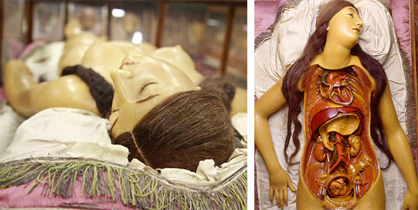 """Anatomical Venus"" wax model with real human hair, probably sculpted by Clemente Susini around 1790, at La Specola, Museo di Storia Naturale, Florence, Italy. (At left, photo by Joanna Ebenstein, via Morbid Anatomy; at right, photo by Saulo Bambi, La Specola)"