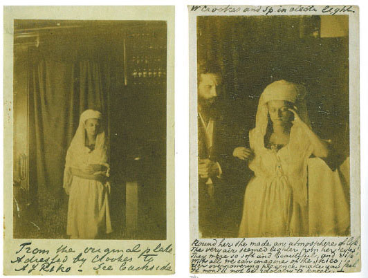"Florence Cook manifests Katie King outside her cabinet and with Sir William Crookes. (From the Metropolitan Museum of Art exhibition catalog, ""The Perfect Medium: Photography and the Occult"")"