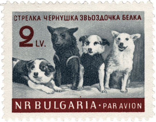 This 1961 Bulgarian stamp shows a group portrait of Strelka, Chernushka,  Zvezdochka, and Belka, taken at the press conference held on March 28, 1961. (© FUEL Publishing)