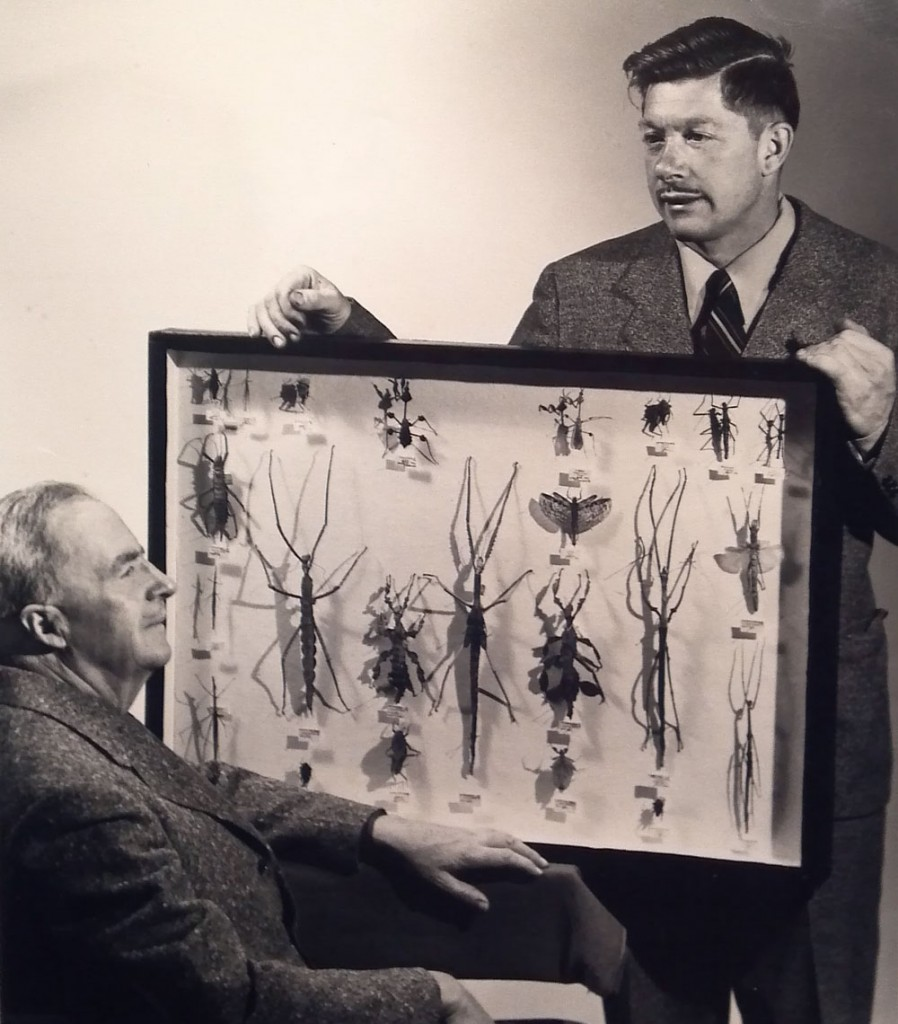 James May, left, and John May, with a display of Phasmatodea, or stick insects, in the 1940s.