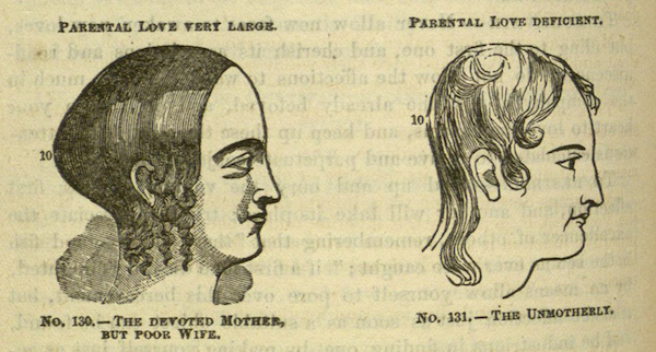 "Phrenologists believed the shape of one's skull could determine ""Philoprogenitiveness,"" or one's capacity for parental love. (Via Special Collections and Rare Books, University of Missouri Library)"