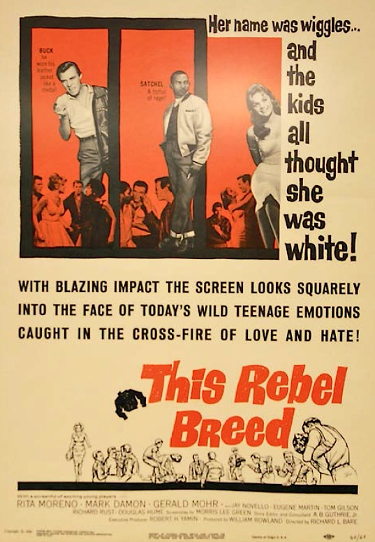 "Puerto Rican actress Rita Moreno played the ""tragic mulatto"" in the 1960 film ""This Rebel Breed."" (From ""Understanding Jim Crow"")"