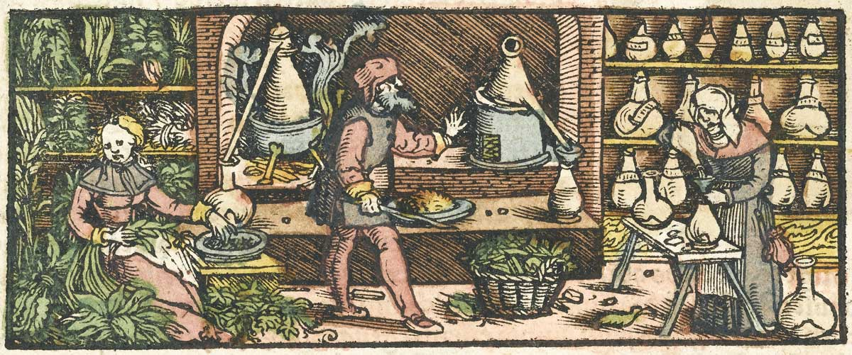 Our Pungent History: Sweat, Perfume, and the Scent of Death