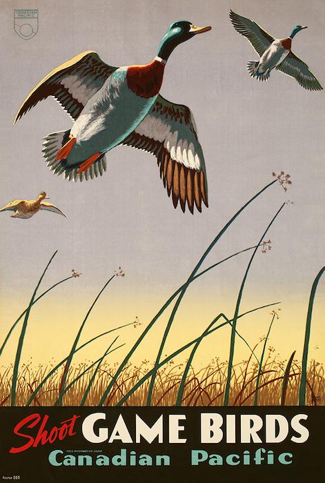Hall Game Birds