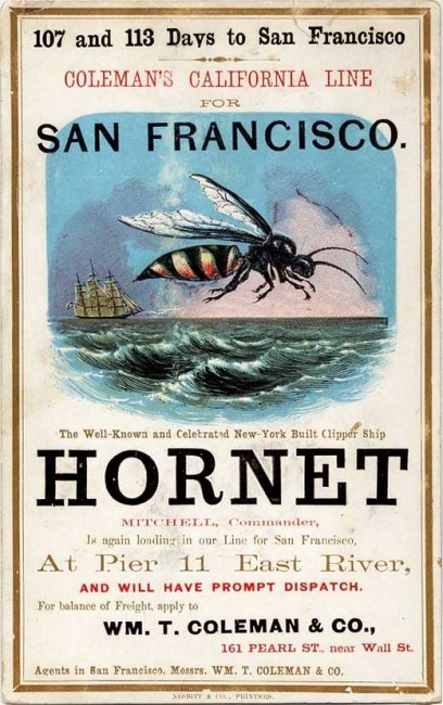 A Hornet clipper card, circa 1850s. Via Wikimedia.