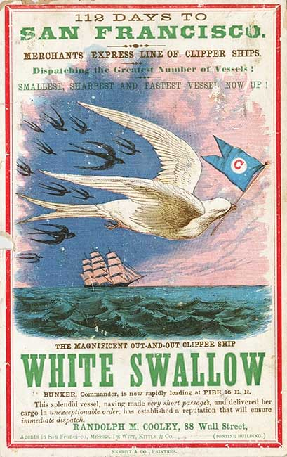 A clipper card for the White Swallow, circa 1855. Via Wikimedia.