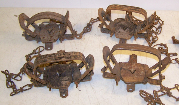 These four rusted vintage Victor Traps were produced by Oneida Community, Limited.