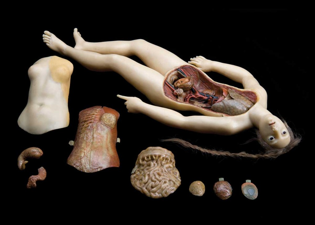 A half-scale wax Anatomical Venus likely made as a study for La Specola's Medici Venus. Courtesy the Wellcome Library, London.