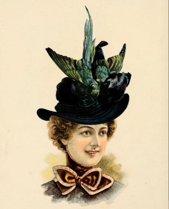 A taxidermied bird was affixed to a hat offered in the O'Neill catalog in 1899. (Via CharmaineZoe's Marvelous Melange, Creative Commons 2.0)