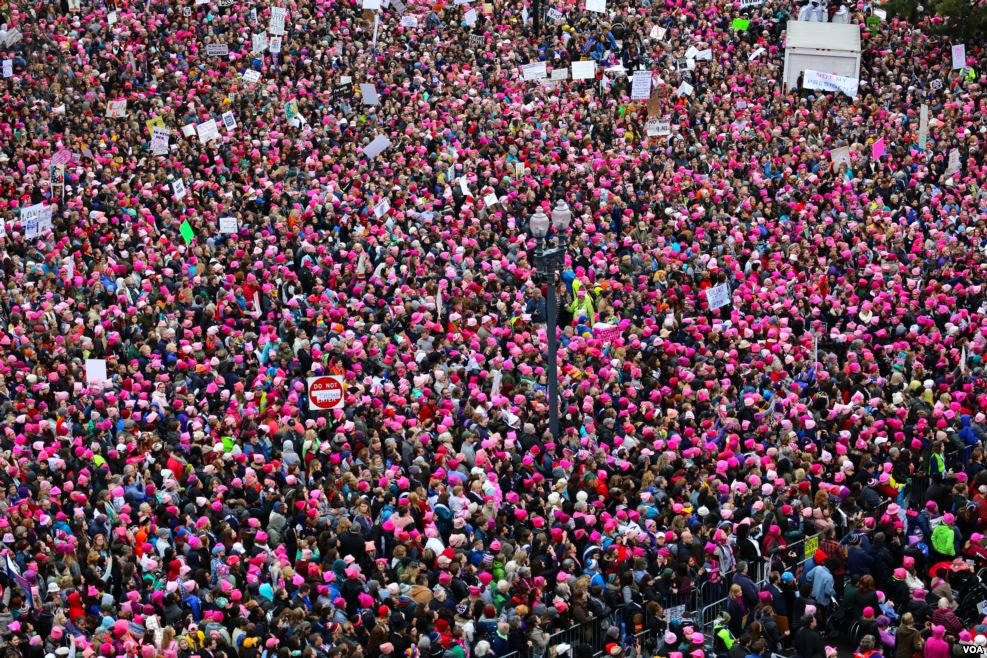 View of the 2017 Women's March on Washington from the roof of the Voice of America building in Washington, D.C. More than 3 million Americans participated in the January 21 protest in cities around the country. (Photo by Brian Allen, Voice of America, via WikiCommons)