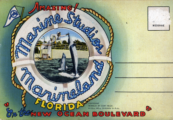 A 1946 souvenir postcard folder from Marine Studios' Marineland. (Courtesy of Tim Hollis)