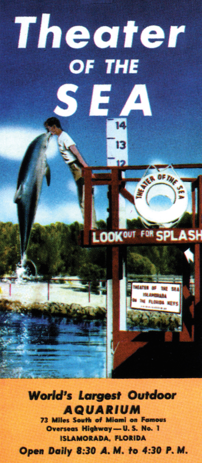 "This vintage brochure for Theater of the Sea in Islamorada shows one of the park's trained bottlenose dolphins. The Florida Keys attraction, established in 1946, still offers tourists ""swim with the dolphins"" experiences, and even a ""paint with a dolphin"" session. (Courtesy of Tim Hollis)"