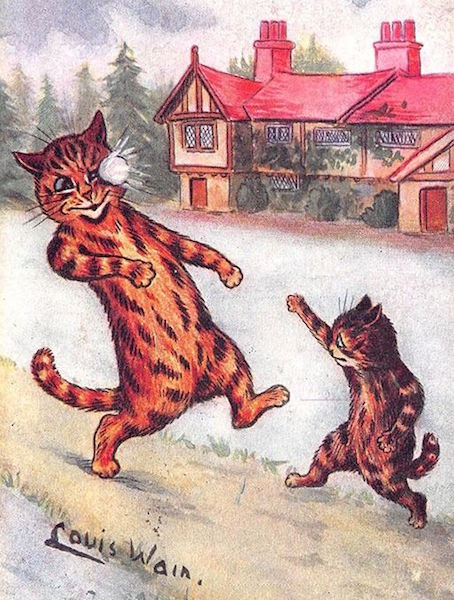 Christmas In July Cat Meme.Original Catfluencer How A Victorian Artist S Feline