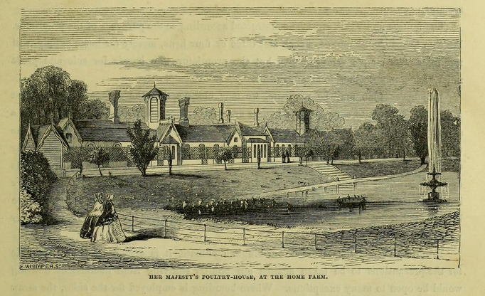 Queen Victoria's poultry house, circa 1850s.