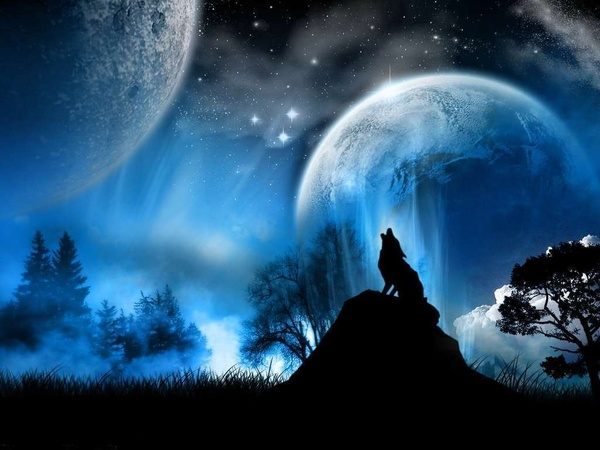 lonewolf121