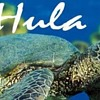 Hula_Hut_and_More_Store