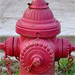 Fire Hydrant Collections